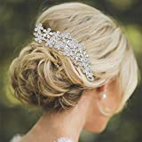 BriLove Womens Wedding Bridal Crystal Multi Flower Cluster Leaf Vine Bling Hair Comb Clear Silver-Tone
