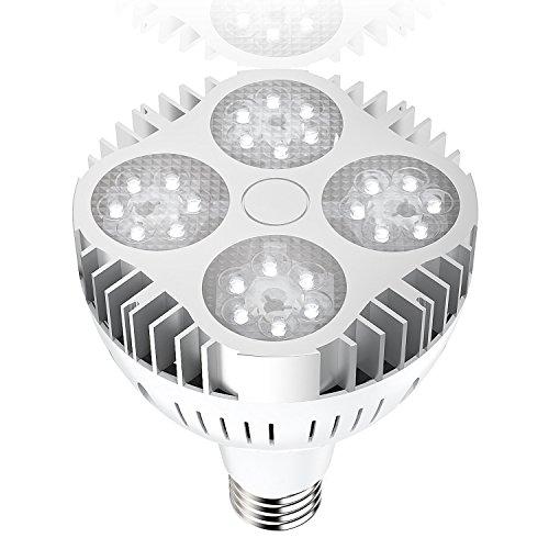 Led Vs Halogen Low Voltage Lighting