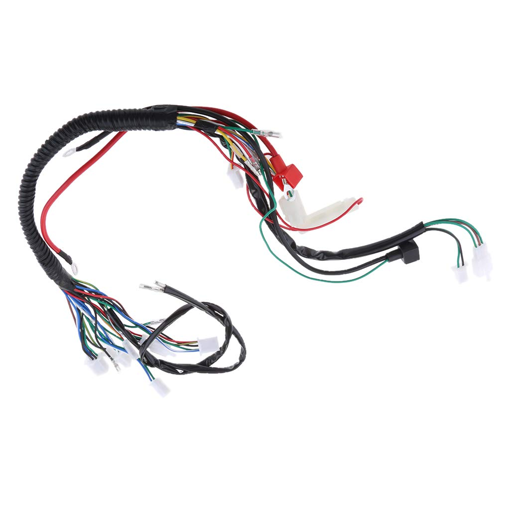 B Blesiya Electric Engine Start Wire Wiring Harness Loom Fits For 50 Pit Bike 70 90 110 125cc