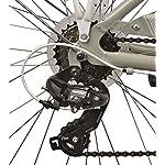 Legnano-Ciclo-446-Bellaria-City-Bike-Donna-Grigio-44