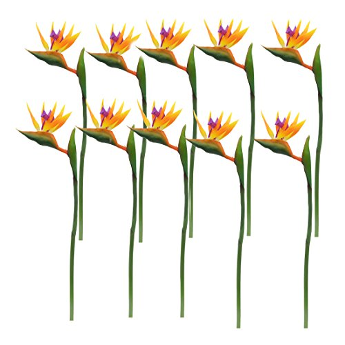 - Calcifer 32'' Real Touch Bird of Paradise Artificial Flowers Bouquet for Home Garden Decoration/Wedding Party Decor Orange (Package Quantity: 10 Stems)