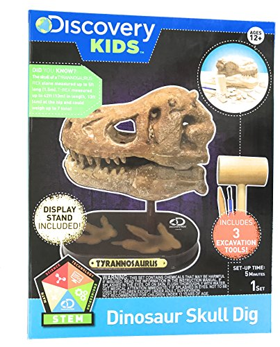 Discovery Kids Dinosaur Excavation Kit Tyrannosaurus Skull Fossil Model with Digging Tools and Bonus Poster