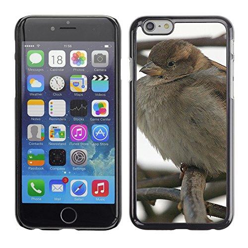 "Premio Sottile Slim Cassa Custodia Case Cover Shell // F00011471 oiseau // Apple iPhone 6 6S 6G PLUS 5.5"""