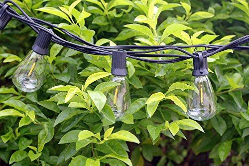 C7 Led Light Sets
