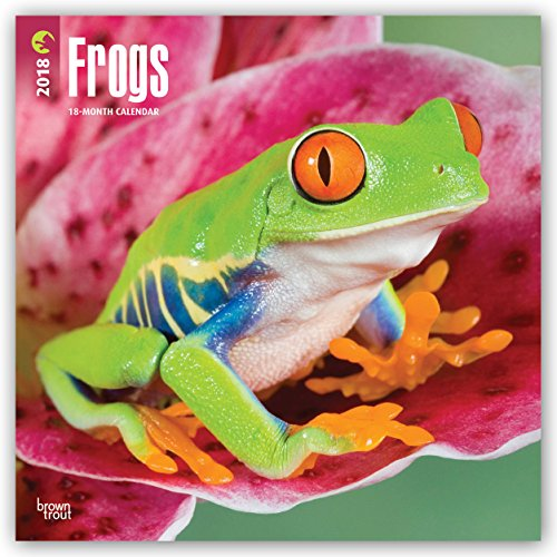 Frogs 2018 12 X 12 Inch Monthly Square Wall Calendar, Wildlife Animals Amphibians