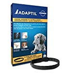 ADAPTIL Collar for Puppies Small Dogs (D.A.P. Dog Appeasing Pheromone Collar) - Provides Constant Calming Comfort, Even Outdoors (Puppy/Small Dog, 1-Pack)