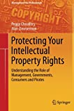 Protecting Your Intellectual Property Rights: Understanding the Role of Management, Governments, Consumers and Pirates (Management for Professionals)