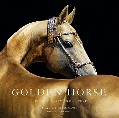 Akhal Horse Teke Horses - Golden Horse: The Legendary Akhal-Teke