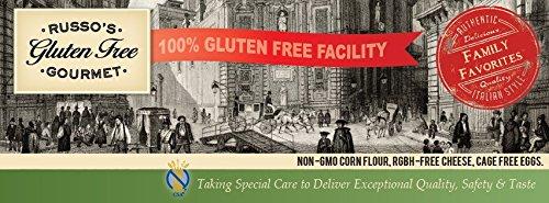Russo's Gluten Free Bulk Plain Breadcrumbs (15 LB) by Russo's Gluten Free Gourmet (Image #1)