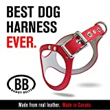 ORIGINAL DURABLE Buddy Belt Classic LEATHER Dog Harness For Large Dogs (Red, Size 10)