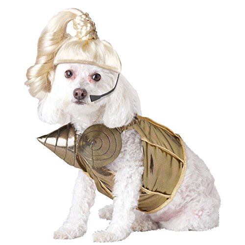 UHC Pop Queen Madonna Funny Theme Fancy Dress Puppy Halloween Pet Dog Costume, XS (Funny Halloween Pet Costumes)