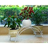 Dazone Arch Metal Potted plant Stand with 3 holders Potted Plant Rack Organizer (White)