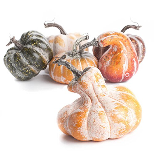Factory Direct Craft Package of 6 Assorted Artificial Frosted Gourds and Pumpkins for Fall Decor]()