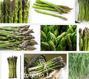 Promotion Asparagus seeds, one of the world's top ten dishes Asparagus officinalis, vegetable seeds,about 100 part