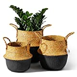 POTEY 730301 Seagrass Plant Basket Set of 3 - Hand
