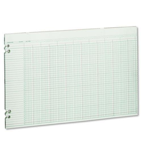 Wilson Jones G5024 Accounting Sheets, 24 Columns, 11 x 17, 100 Loose Sheets/Pack, Green by Wilson Jones