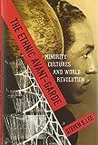 The Ethnic Avant-Garde: Minority Cultures and World Revolution (Modernist Latitudes)