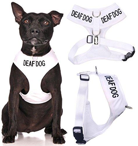 Deaf Dog White Color Coded Waterproof Padded Adjustable Medi