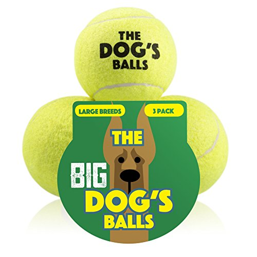 [The Big Dog's Balls, 3 Large Yellow Tennis Balls, Premium, Strong Dog Toy Ball for Dog Fetch & Play. Large Dogs Balls, Too Big for Chuckit Launchers, the King Kong of Dog] (Three Kings Costumes Make)