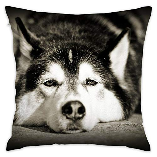 Lazy Siberian Husky Throw Pillow Cases Square Flax Cushion Cover for Sofa Decorative Office Chairs Home Decorative 18x18 Pillowcase