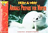 img - for How and Why Animals Prepare for Winter (How and Why Series) book / textbook / text book