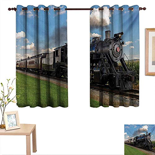 Train Window - MartinDecor Steam Engine Customized Curtains Vintage Locomotive in Countryside Scenery Green Grass Puff Train Picture 55