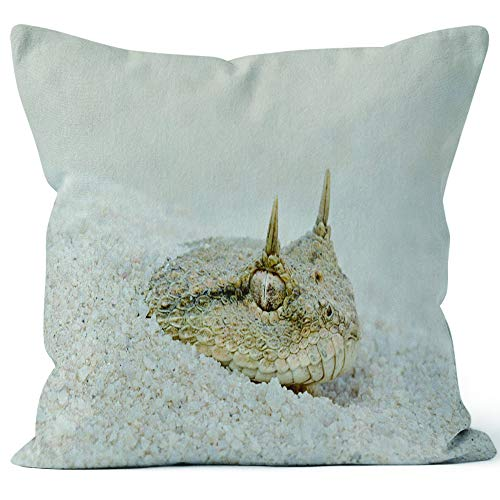 Nine City Desert Horned Viper Hiding in Sand Throw Pillow Cushion Cover,HD Printing Decorative Square Accent Pillow Case,18
