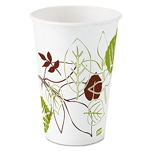 Dixie Pathways Polycoated Paper Cold Cups, 16oz, 1200/Carton DXE16PPATH