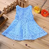 Internet Cute Toddler Kids Girls Lace Hollow Floral Dress for 0-2 Years Old (18-24Months, Light Blue)
