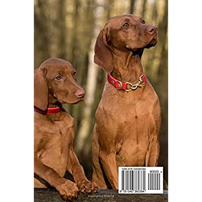 Two-Charming-Hungarian-Viszla-Dogs-Pet-Journal-150-Page-Lined-NotebookDiary-Paperback–April-28-2017