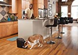 PetSafe-Healthy-Pet-Simply-Feed-Automatic-Pet-Feeder-Dispenses-Dog-Food-or-Cat-Food-Digital-Clock