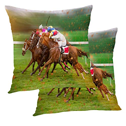 - BaoNews Home Horse Animal Pillow Covers, Race with Home Straight Horse Track Day Animal Throw Pillow Cover 18X18 Inch Cotton Square Cushion Decorative Pillow Case for Sofa Bed