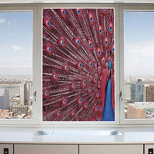 3D Decorative Privacy Window Films,A Beautiful Male Peacock Displays His Plumage Majestic Surreal Wildlife Theme Art,No-Glue Self Static Cling Glass film for Home Bedroom Bathroom Kitchen Office 17.5x