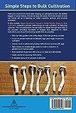 Magic Mushroom Grower's Guide Simple Steps to
