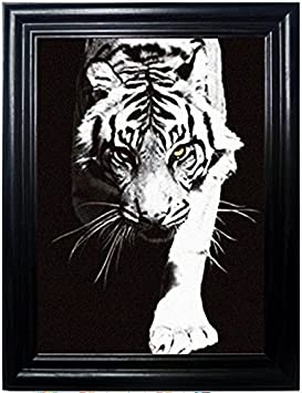 Those Flipping Pictures Big Cats Framed Holographic Wall Art-Posters That FLIP and Change Images-Lenticular Technology Artwork-Multiple Pictures in ONE-Hologram Images Change-Technology