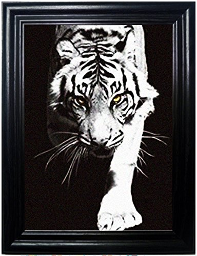BIG CATS FRAMED Holographic Wall Art-POSTERS That FLIP and CHANGE images-Lenticular Technology Artwork--MULTIPLE PICTURES IN ONE--HOLOGRAM Images Change--Technology by THOSE FLIPPING PICTURES by Those Flipping Pictures (Image #2)