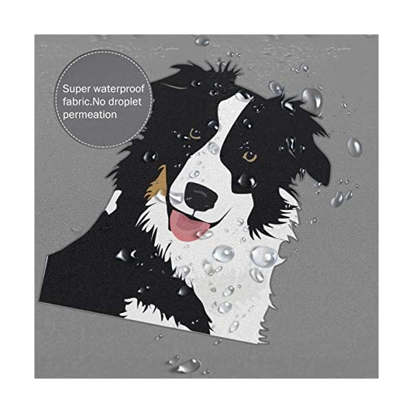 """Perfect Appearance Border Collie Shower Curtain 7-12 Grommet Holes Waterproof Thick Bathroom Plastic Shower Curtains 48"""""""" W X 72"""""""" H No Chemical Odor Rust Proof Grommets 5"""