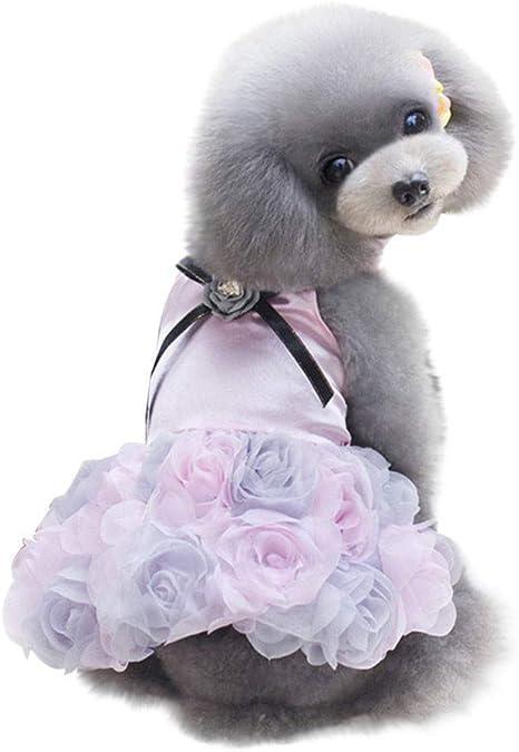 CAOQAO - Vestido para Perro con impresión de Encaje Rosa y tutú ...