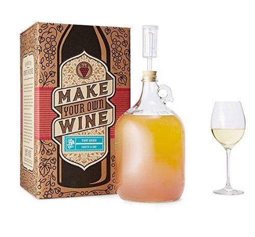 the 1 gallon fruit winemaking kit - 9