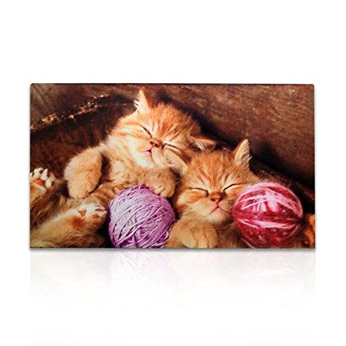 Front Door Entrance Cat Mat: Stylish Rubber Welcome Doormat | Indoor Entrance Low Profile Door Mats For Home, Garage, Patio, Back Door & Cat Lovers 30in x 18in (Cat) - Lovers Welcome Door Mat