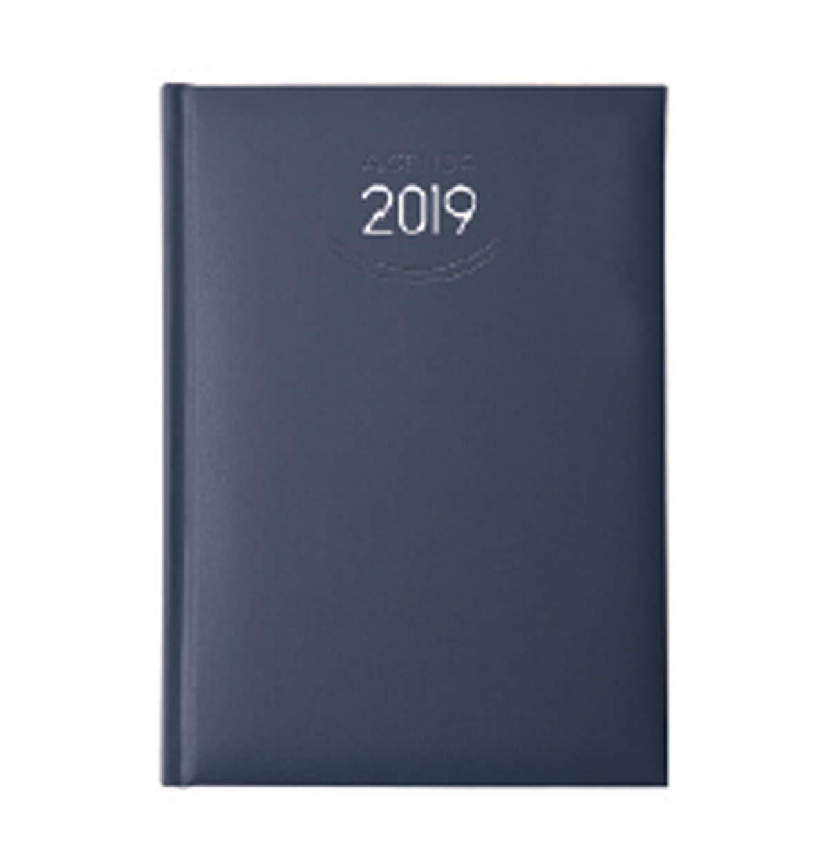 Agenda 2019 diaria personalizable Classic Daily Blue revuelo ...