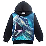 Boys Hoodies Cool Dinosaur Hooded Sweatshirt Boys Easter Hoodie Long Sleeve T Shirts 5T