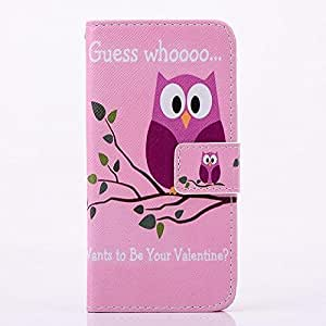 LliVEER Stylish Folding Stand Flip Case Cover Skin Protector with Cards Holder Wallet Leather for iphone 5S 5 Owl