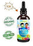 Best Kids Natural Allergy Relief - Non Drowsy Kids Allergy Medicine - Allergy Medicine for Sneezing, Runny Nose & Watery Eyes