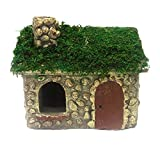 "MayRich 6"" X 5"" Fairy Garden Mossy Cottage For Sale"