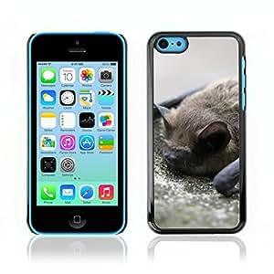 Carcasa Funda Case // Bat V0000063 // Apple Iphone 5C