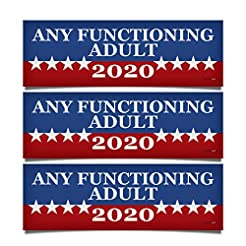3 PACK! Any Functioning Adult 2020 Funny...