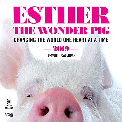2019 Esther The Wonder Pig 2019 Wall Calendar, More Inspiration by BrownTrout