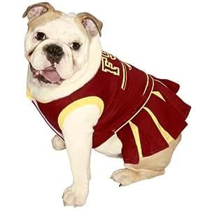 Amazon.com : Pets First Florida State University Dog