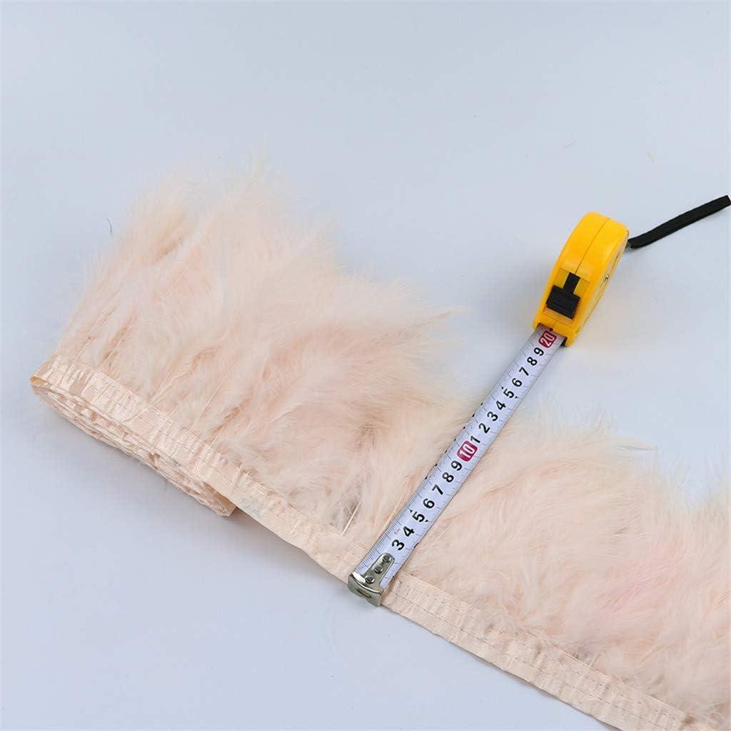 F Fityle 2m Plume Ruban en Dentelle Gland Accessoire D/écoration Bricolage rose poussi/éreux